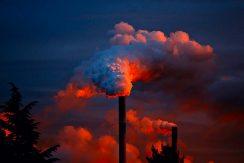 L'inquinamento fa ingrassare?